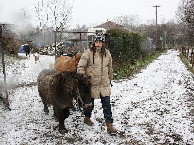 Renáta Deutscharová (na snímku) je ze ztráty svých koní zdrcená.