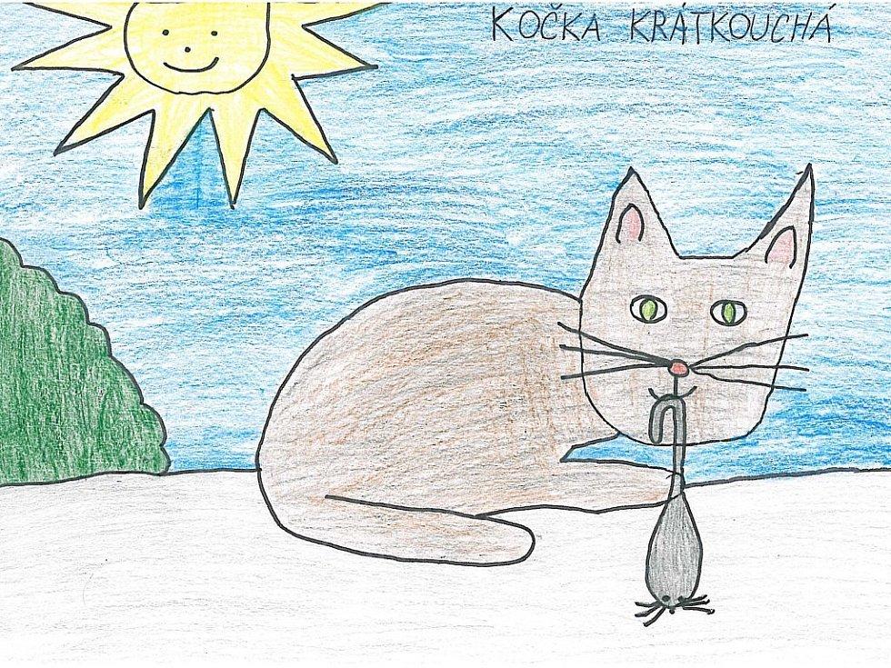 phat kočičí galerie halloween kreslený porno