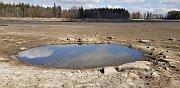 Vypuštěný Velký Pařezitý rybník - přírodní jezírko.