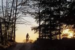 Lidé v Havlíčkově Brodě využili možnosti otevření sportovišť v rámci zmírnění zákazu volného pohybu osob. Cyklistka na cyklotrase mezi Termesivy a Pohledem u Havlíčkova Brodu.