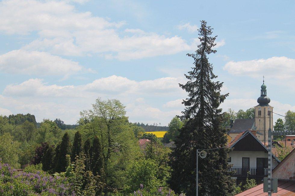 Kostel svatého Václava je dominantou městyse.