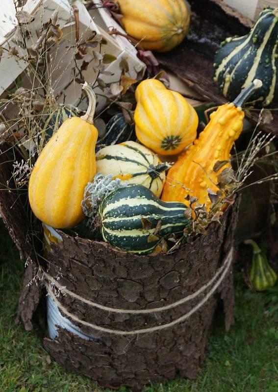 Během celého týdne sociálních služeb se klienti domova pro seniory v Lesnově věnovali tvorbě podzimní dekorace.