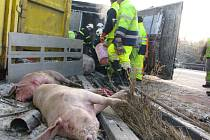 Odklízení nehody dvou kamionů na 118.kilometru dálnice ve směru na Brno