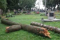 Borovice při červencové prudké bouřce spadla na jeden z hrobů na hřbitově v Dolní Cerekvi a značně ho poškodila. Na snímku je aktuální stav z pondělí. Červencovou kalamitu připomíná už jen pár klád.
