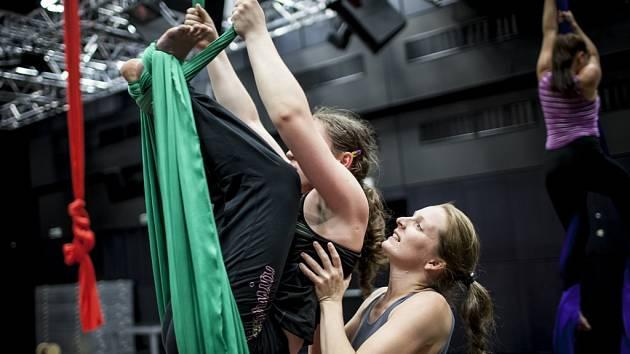 Eliška Brtnická má vztah k akrobatickému tanci a gymnastice už od mala, kdy navštěvovala různé kroužky. Poté, co měla s příměstskými tábory v Praze dobré zkušenosti, rozhodla se pro uskutečnění letního cirkusu v Jihlavě.
