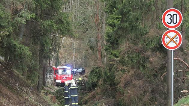Nejvíce práce měli hasiči na Jihlavsku mezi krajským městem a Velkým Beranovem. Na snímku zasahují u obce Henčov.