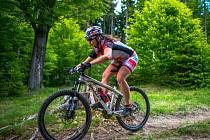 Terén. V sobotním závodě Pteam Xtriatlon čeká závodníky cyklistická část i v lese.