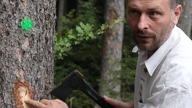 Ředitel lesního a vodního hospodářství Lesů ČR Jiří Groda ukazuje, jakou škodu působí kůrovec.