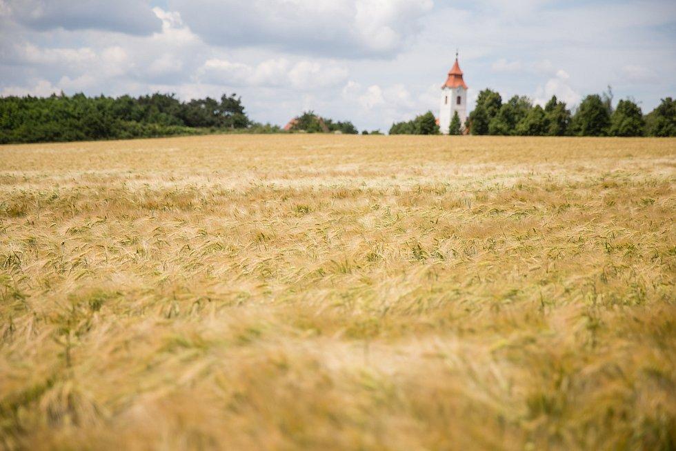Krajina na Vysočině.