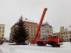 Bez ozdob. Včera v dopoledních hodinách pracovníci SML postupně odřezávali větve z desetimetrového vánočního stromu na jihlavském Masarykově náměstí.