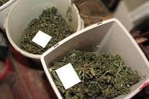 V domku našli jihlavští kriminalisté sušené části rostlinek konopí.