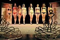 Finalistky Miss Vysočiny 2010