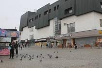 Holubi jsou dnes neodmyslitelnou součástí jihlavského Masarykova náměstí.