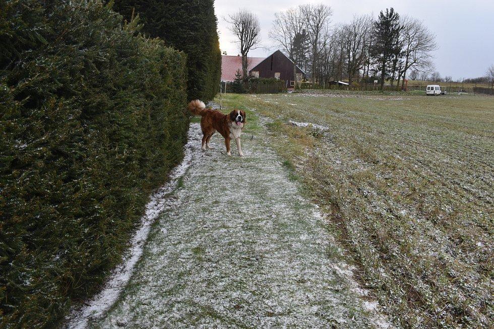 Na Vysočině začal padat sníh.