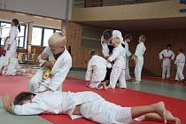 Dětské letní školy aikido se každý rok zúčastňuje kolem padesáti dětí z Jihlavy, Třebíče, Polné, Humpolce a Českého Krumlova. Mimo cvičení zahrnuje soustředění i společný výlet, přenocování a večer plný her. Celé soustředění je zakončeno zkouškami.