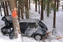 Peugeot se u Bílého Kámene zastavil o dvojici stromů.