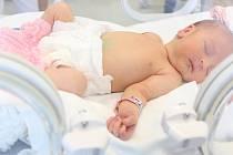 Novorozenecká JIP.