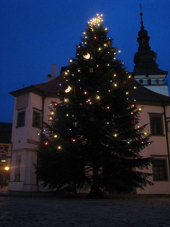 Vánoční strom, který stojí na pelhřimovském Masarykově náměstí.