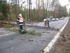 Silný vítr povalil o víkendu stromy. Kmeny odklízeli ze silnic hasiči.