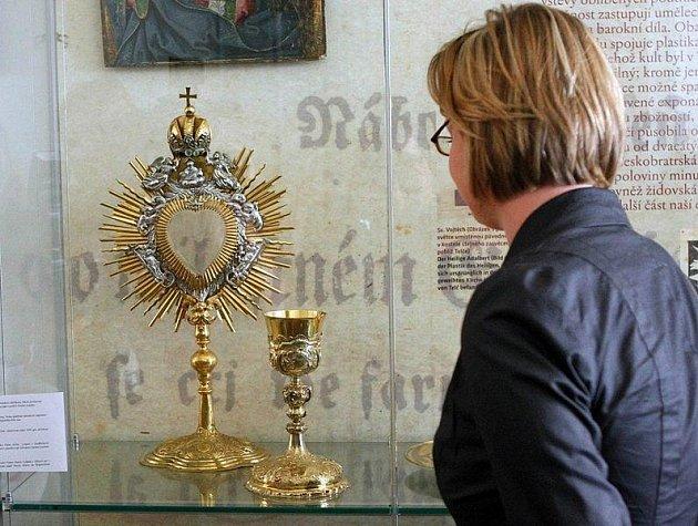Snímek z Dolnorakouské výstavy v Telči