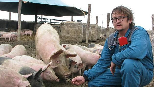Majitel sasovské biofarmy Josef Sklenář se svými svěřenci těsně před jejich přesunem do chléva. V březnu se ocitnou znovu pod širým nebem.