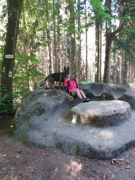 Ve volném čase chodím se svým psem na procházky do přírody. Psy mám ráda od dětství a několik let jsem se věnovala sportovní kynologii vJihlavském kynologickém klubu.