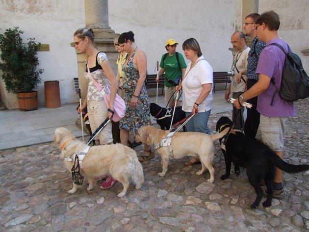 Na rekondičním pobytu v hotelu Harmonie ve Švábově na Batelovsku si dalo dostaveníčko třicet dva nevidomých s dvaatřiceti cvičenými vodicími psy. Týden věnovali zrakově postižení procvičování čtyřnohých průvodců, školení, radám a výměně názorů. Za poznání