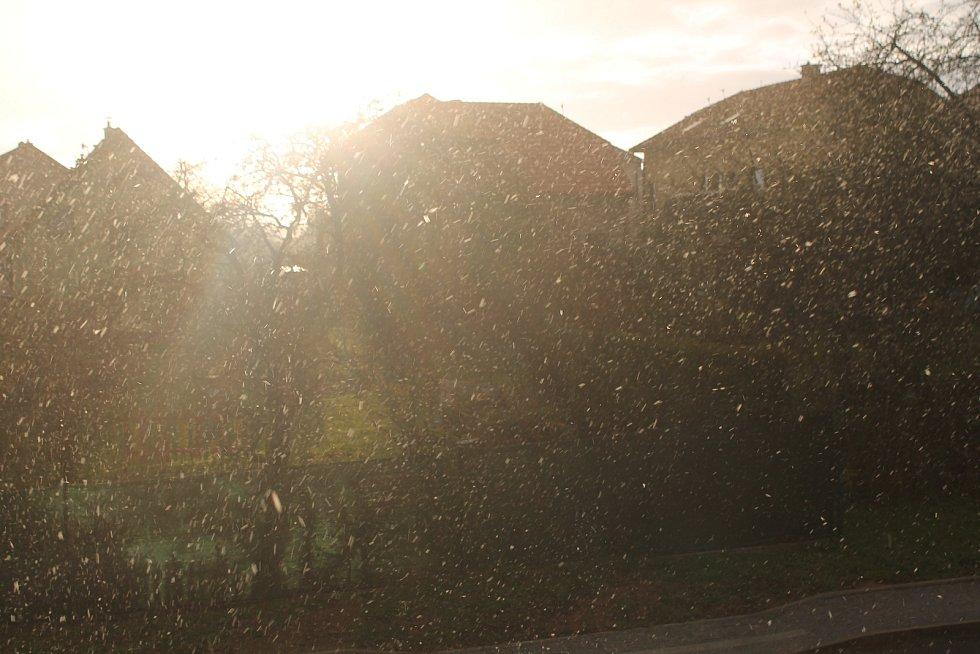 V Lukách nad Jihlavou ještě svítilo slunce, když začalo sněžit. I když se obloha brzy zatáhla, sněhová přeháňka trvala jen pár minut.