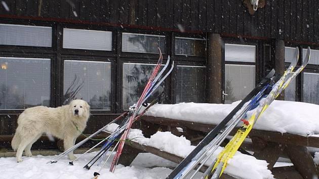 Pro běžkaře je chata na Čeřínku přirozeným a také příjemným cílem tůr.