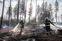 Požár lesa na Vysočině.