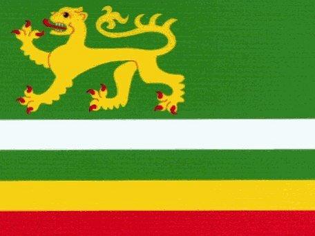 Vlajka obce Záborná.