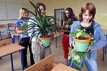 Budoucí deváťačky ze základní školy ve Štokách na Havlíčkobrodsku nechtějí mít svou třídu strohou. Květiny jsou tím pravým, co ji oživí.