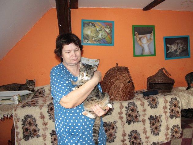 Taťána Homolková (na snímku) má v kočičím útulku ve Skrýšově u Polné kolem stovky koček. Útulek spadá pod zlínské občanské sdružení Dobré ruce.