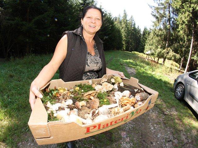 Když má Kateřina Pauzarová na okraji lesa krabici plnou hub, ví, že výstava bude vydařená.
