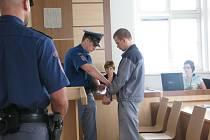 Jednadvacetiletý Roman Homolka z Polné se ke svým činům před soudem v plném rozsahu doznal.