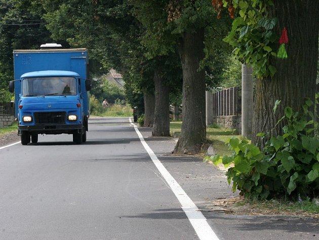 O metr širší silnice nebo stinná alej? Boj starosty Růžené s Českou inspekcí životního prostředí zatím nemá vítěze. O osudu lipové aleje rozhodne až ministerstvo životního prostředí.