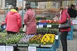 Stánků na náměstí bylo v pondělí 12. dubna málo, lidé chodili spíše ze zvědavosti.