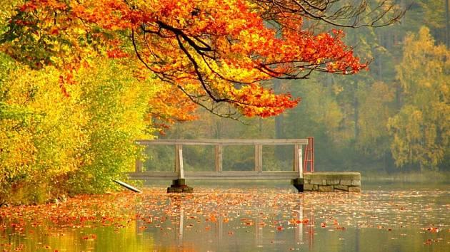 Velký Pařezitý rybník. Ilustrační foto.