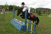 Na padesát koní a poníků změřilo své síly v parkurových závodech v Červeném Kříži.