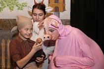 S pohádkou o Popelce uspěli mladí herci na třešťském divadelním jaru. V neděli ji zahrají také v DIODu.