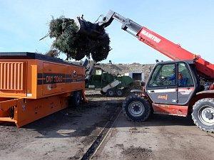 Na kompostárně teď štěpkují použité vánoční stromky.
