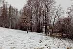Po jarních dnech se v pátek 5. března na Vysočinu ještě vrátila zima, sněžilo i na Jihlavsku.