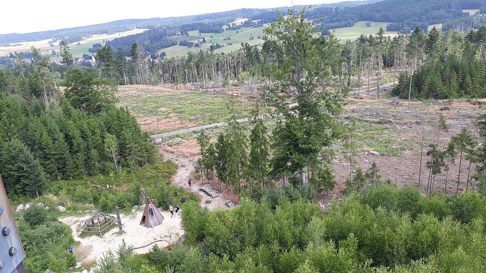 Vyžití v lesoparku U Jakuba s rozhlednou najdou jak nejmenší, tak i dospělí.