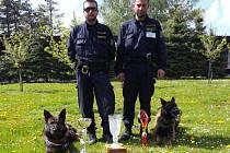 Policejní psovodi z Vysočiny dokazují, že patří mezi špičky ve svém oboru. Válcují okolní kraje v soutěži.