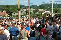 Na stavbě májky 5. června 2003 se v Nové Vsi podílelo 70 lidí, slavnost kácení máje proběhla 8. června 2003.