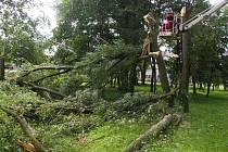 Na pelhřimovském sídlišti Pražská pokácela bouře několik stromů. Jejich kmeny včera likvidovali dělníci z Technických služeb.