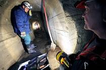 Helma, svítilna, rukavice a vysoké nepromokavé boty. To je výbava deratizátorů, kteří se pravidelně vydávají pokládat nástrahy na hlodavce do jihlavského podzemí.