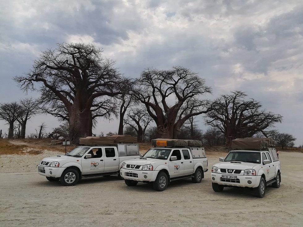 Naše flotila a úctyhodné baobaby v Botswaně.