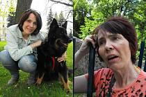 Milena Štrejbarová v roce 2013 (snímek vlevo), kde pózuje s fenkou Sárou, a její současný zdravotní stav (snímek vpravo).