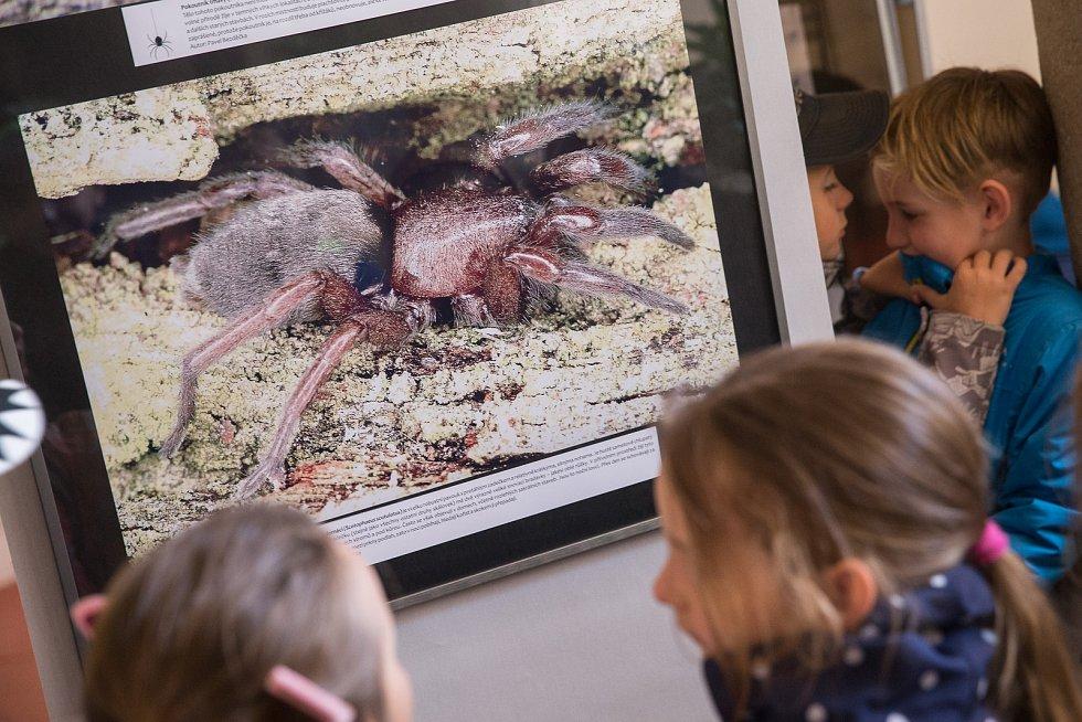 Den Země v Muzeu Vysočiny v Jihlavě.